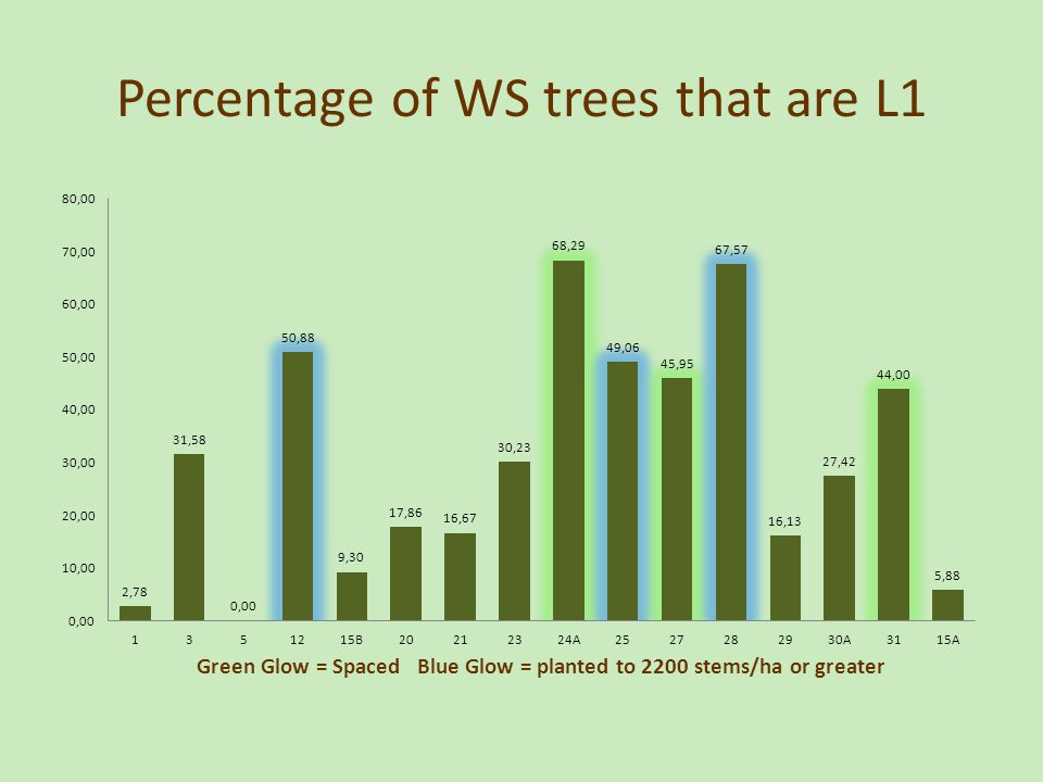 Percentage of WS trees that are L1