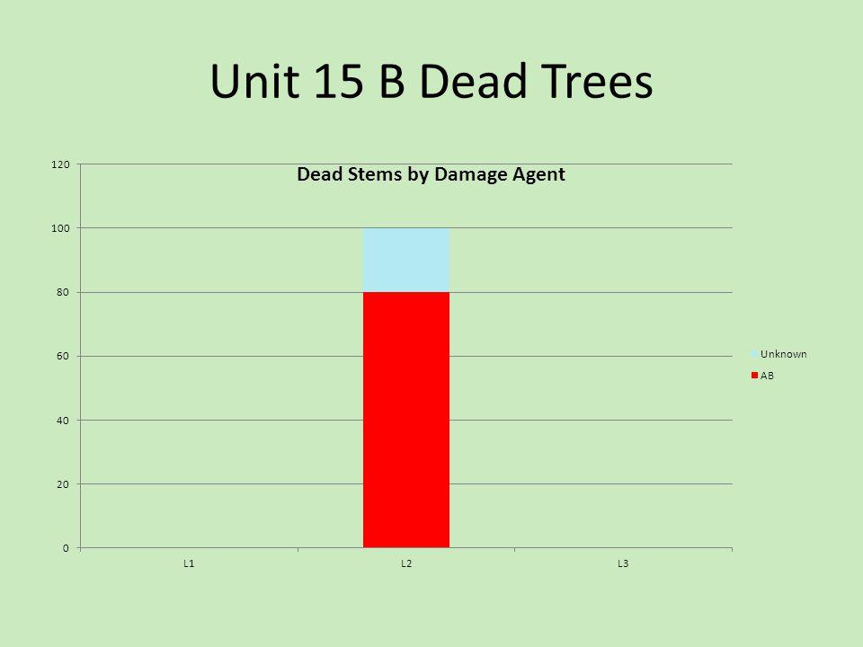 Unit 15 B Dead Trees