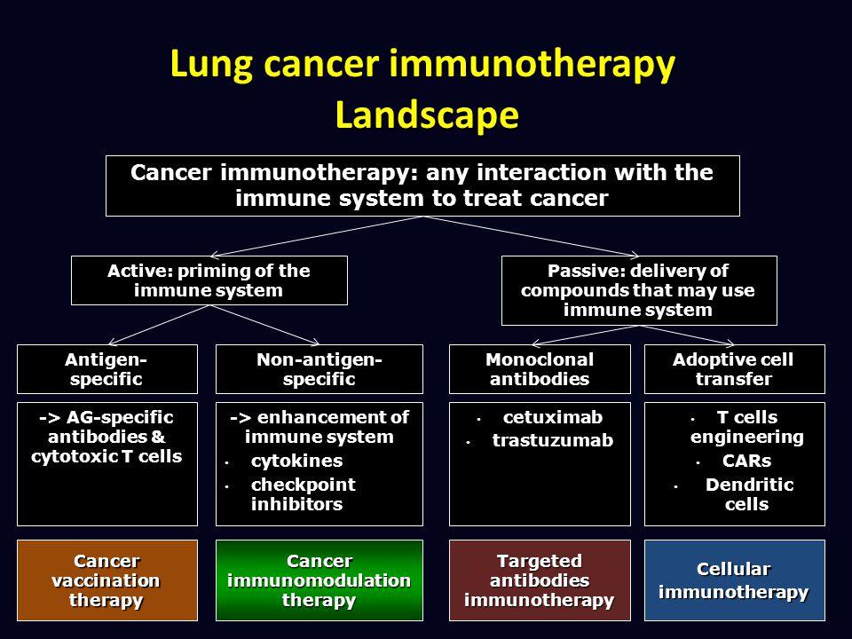 -> AG-specific antibodies & cytotoxic T cells -> enhancement of immune system cytokines cytokines checkpoint inhibitors checkpoint inhibitors Cancer v