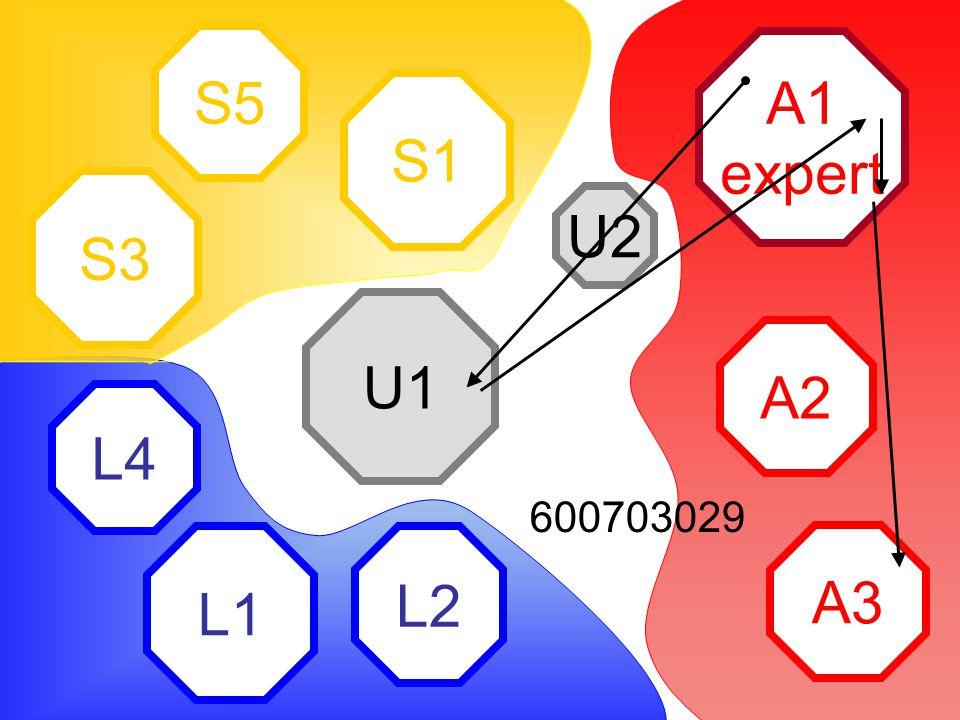A1 expert A2 A3 L2 L1 L4 S1 S5 S3 U2 U1 600703029