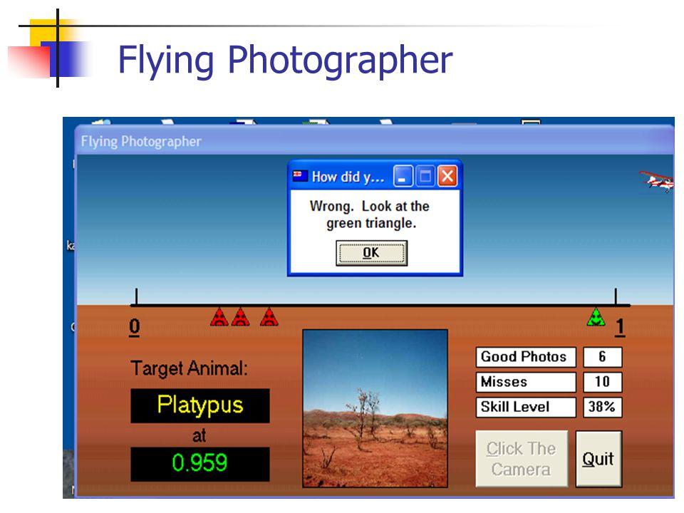 Flying Photographer