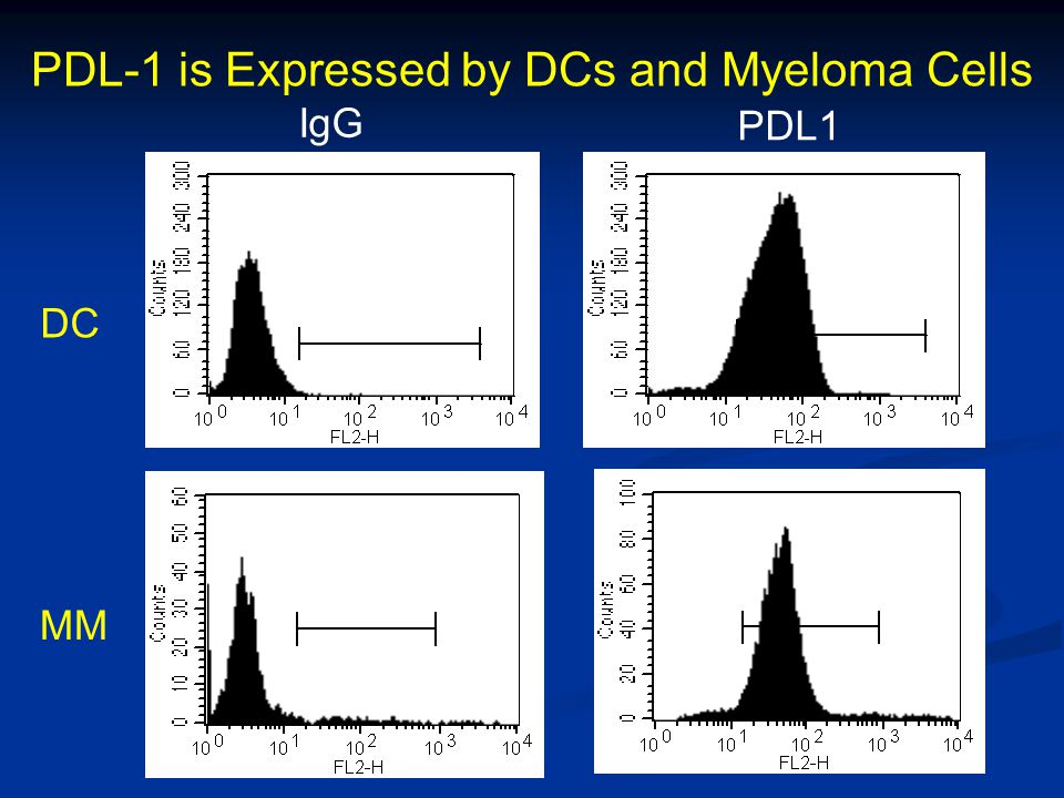 IgG PDL1 DC MM PDL-1 is Expressed by DCs and Myeloma Cells