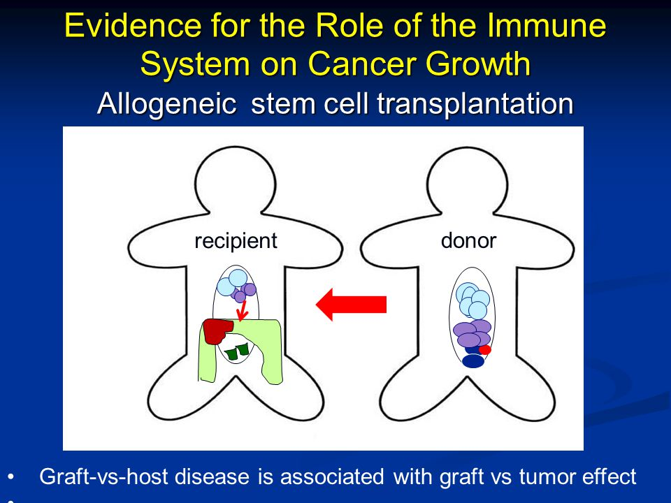 Evidence for the Role of the Immune System on Cancer Growth Allogeneic stem cell transplantation recipient donor Graft-vs-host disease is associated w