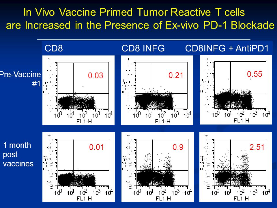 0.21 0.03 0.55 2.510.90.01 CD8/IFNgCD8/IgGCD8/IFNg In Vivo Vaccine Primed Tumor Reactive T cells are Increased in the Presence of Ex-vivo PD-1 Blockade ) Pre-Vaccine #1 1 month post vaccines 10 0 1 2 3 4 FL1-H 10 0 1 2 3 4 FL1-H 10 0 1 2 3 4 FL1-H 0.03 0.21 0.55 CD8 CD8 INFG CD8INFG + AntiPD1