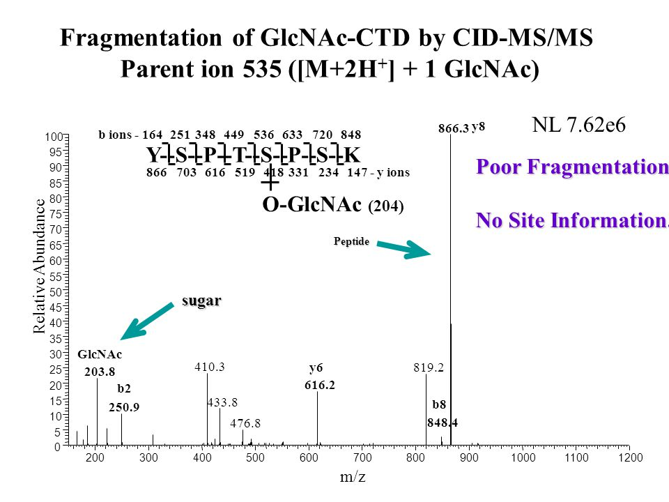 Fragmentation of GlcNAc-CTD by CID-MS/MS Parent ion 535 ([M+2H + ] + 1 GlcNAc) 200300400500600700800900100011001200 m/z 0 5 10 15 20 25 30 35 40 45 50 55 60 65 70 75 80 85 90 95 100 Relative Abundance 866.3 410.3 819.2 203.8 616.2 433.8 250.9 476.8 NL 7.62e6 Y--S--P--T--S--P--S--K b ions - 164251348449536633720848 866703616519418331234147 - y ions O-GlcNAc (204) 848.4 GlcNAc b2 y6 b8 y8 Poor Fragmentation No Site Information.