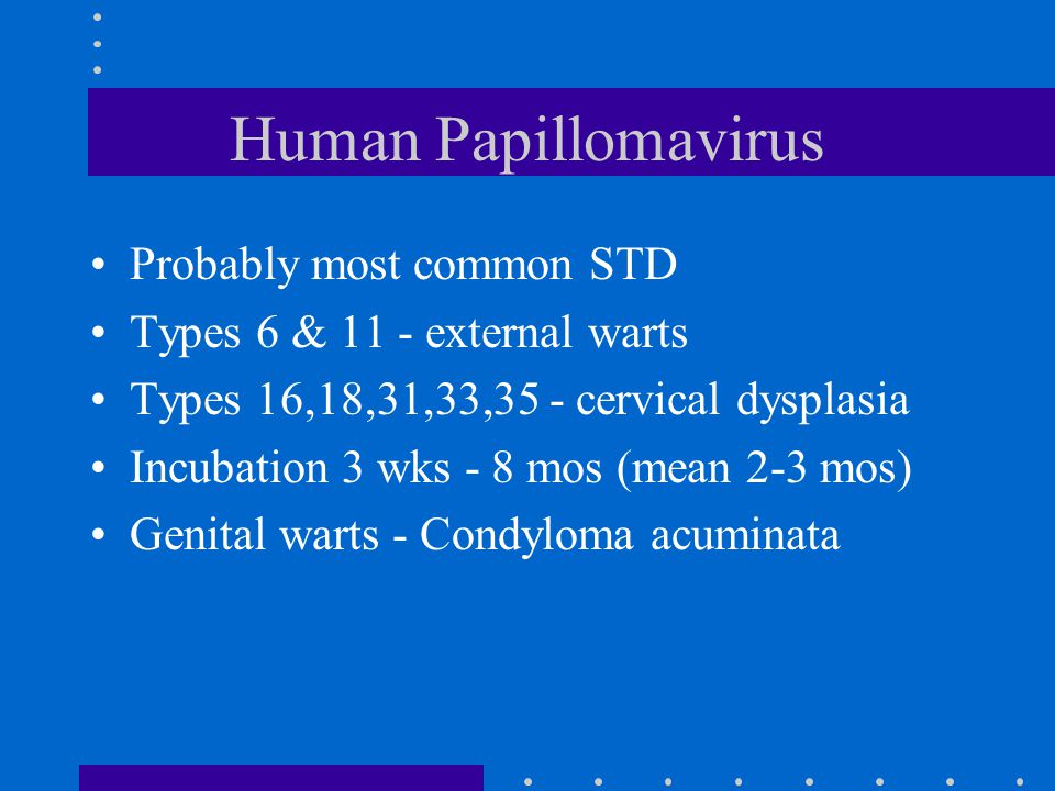 Human Papillomavirus Probably most common STD Types 6 & 11 - external warts Types 16,18,31,33,35 - cervical dysplasia Incubation 3 wks - 8 mos (mean 2