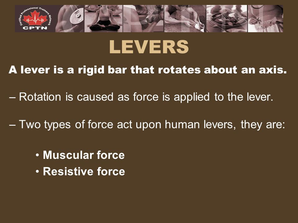 LEVERS A lever is a rigid bar that rotates about an axis. – Rotation is caused as force is applied to the lever. – Two types of force act upon human l