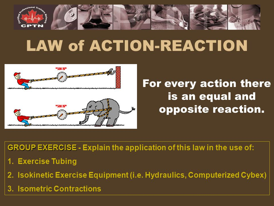 LAW of ACTION-REACTION For every action there is an equal and opposite reaction. GROUP EXERCISE GROUP EXERCISE - Explain the application of this law i