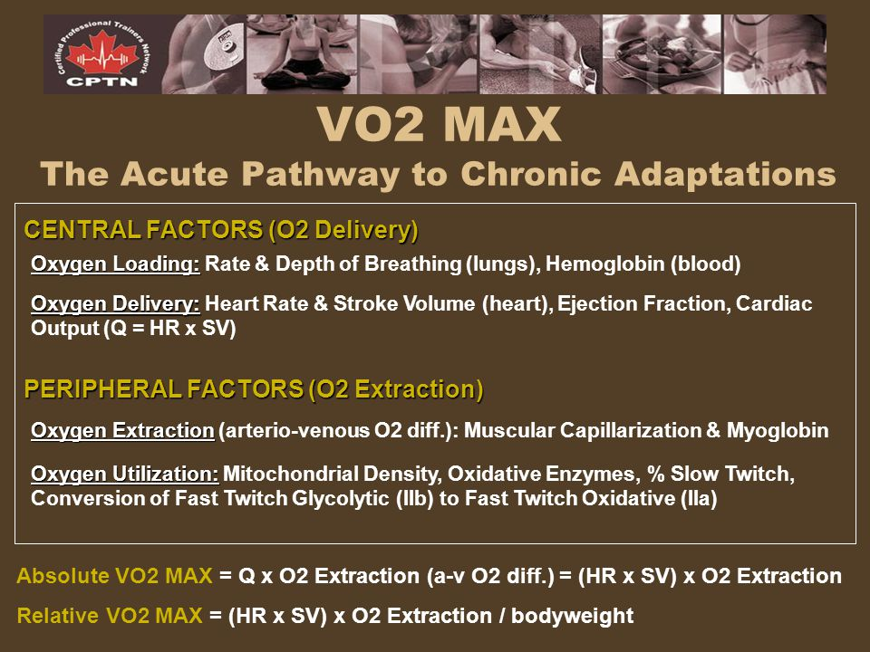 VO2 MAX The Acute Pathway to Chronic Adaptations CENTRAL FACTORS (O2 Delivery) PERIPHERAL FACTORS (O2 Extraction) Oxygen Loading: Oxygen Loading: Rate