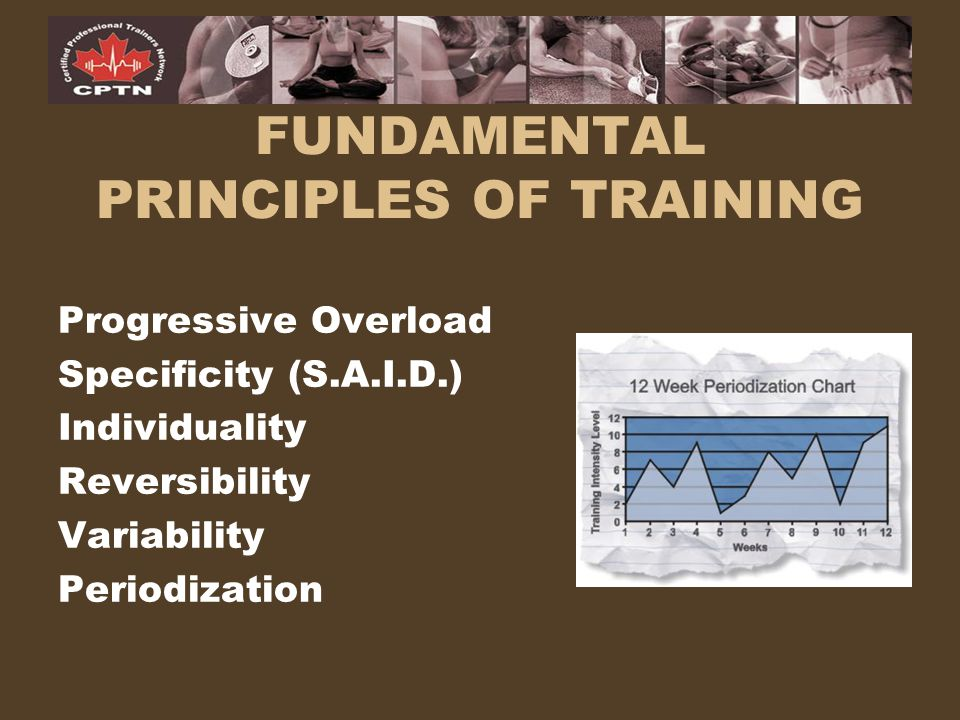 FUNDAMENTAL PRINCIPLES OF TRAINING Progressive Overload Specificity (S.A.I.D.) Individuality Reversibility Variability Periodization