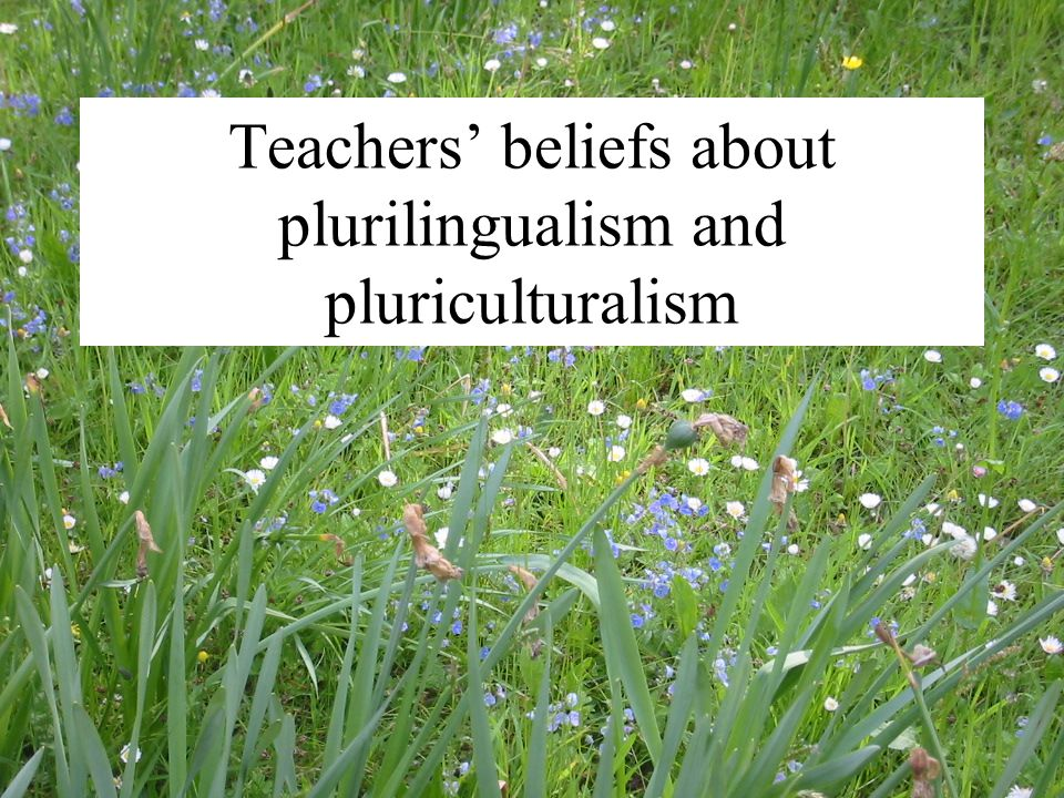 Teachers' beliefs about plurilingualism and pluriculturalism