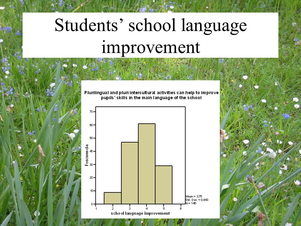 Students' school language improvement
