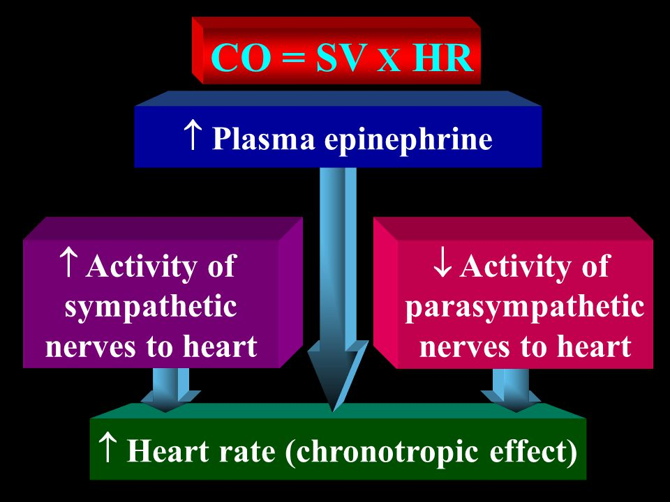 F = Cardiac output (CO)  P = Mean arterial pressure (MAP) R = Total peripheral resistance (TPR)  MAP  CO  TPR MA P  CO = --------------- TP R  P F = --------------- R Ohm's Law