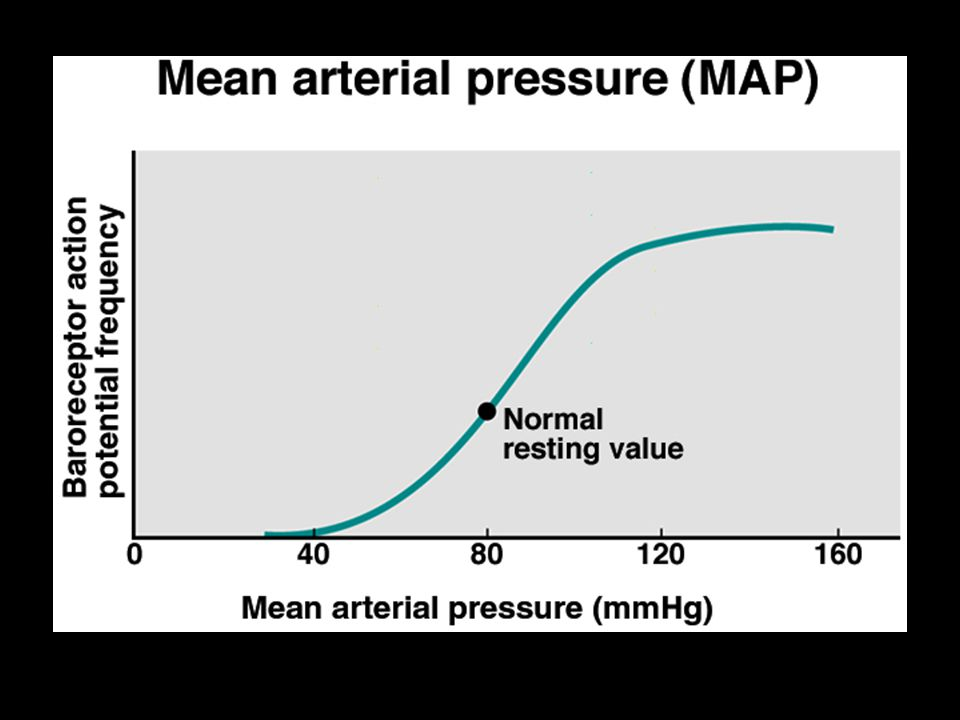Transient loss of consciousness Syncope Associated with Abrupt vasodilatation Inadequate cerebral blood flow Hypotension and bradycardia