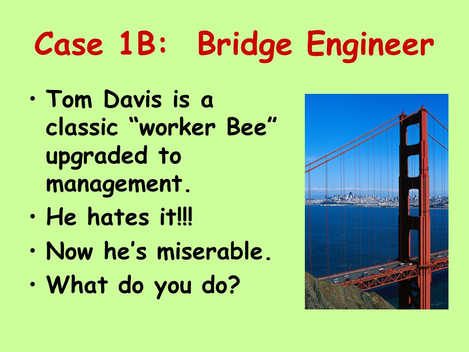 Case 1B: Bridge Engineer Tom Davis is a classic worker Bee upgraded to management.