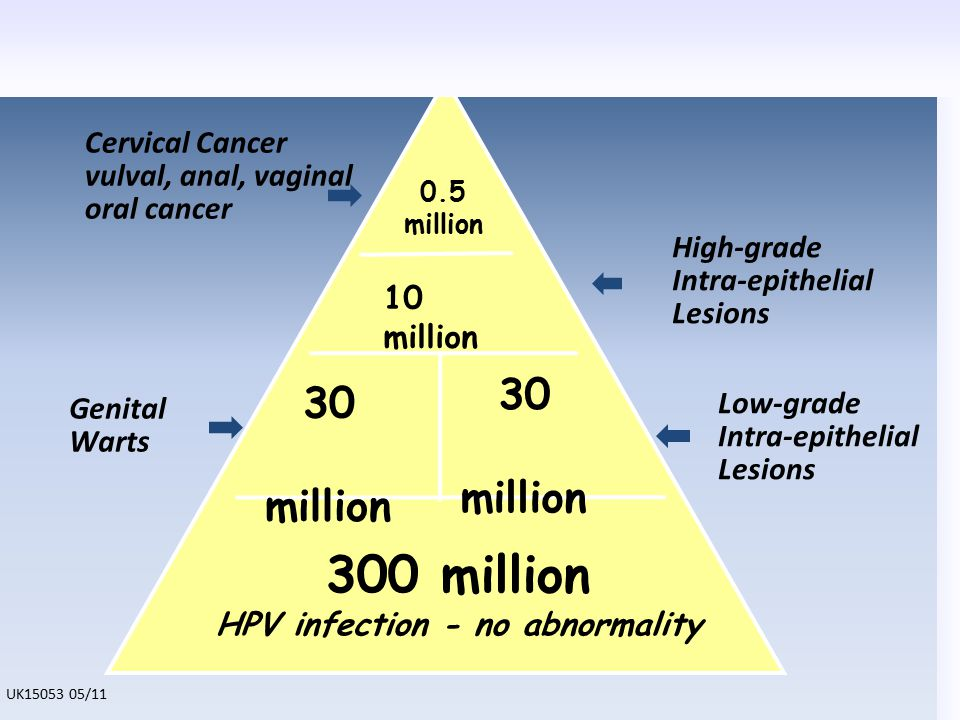 0.5 million 10 million 30 million 300 million HPV infection - no abnormality 30 million Genital Warts Low-grade Intra-epithelial Lesions High-grade In