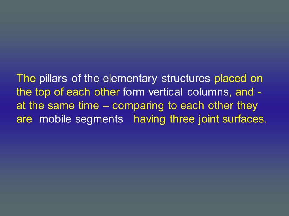 The pillars of the elementary structures placed on the top of each other form vertical columns, and - at the same time – comparing to each other they are mobile segments having three joint surfaces.