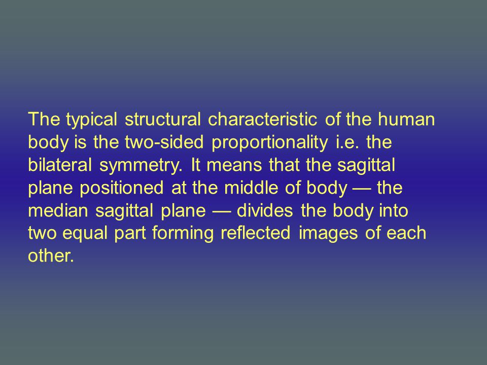 The typical structural characteristic of the human body is the two-sided proportionality i.e. the bilateral symmetry. It means that the sagittal plane