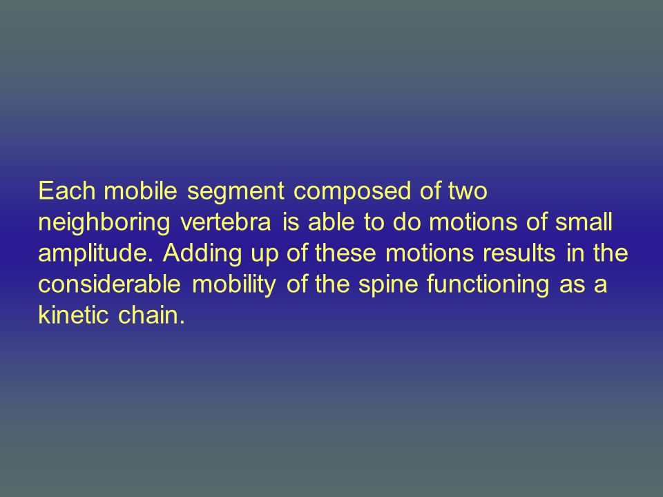 Each mobile segment composed of two neighboring vertebra is able to do motions of small amplitude. Adding up of these motions results in the considera