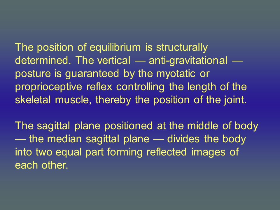 The position of equilibrium is structurally determined.