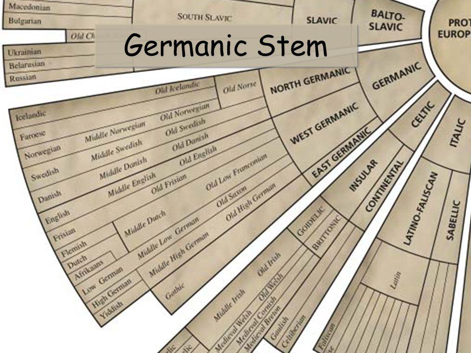 Germanic Stem