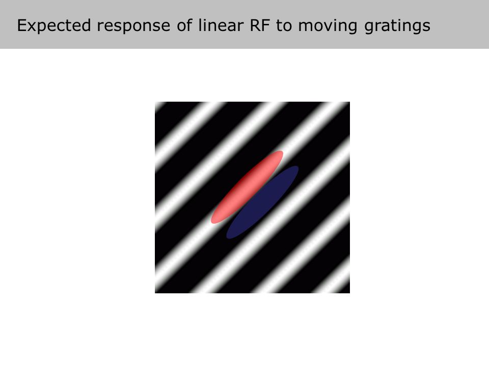 Expected response of linear RF to moving gratings