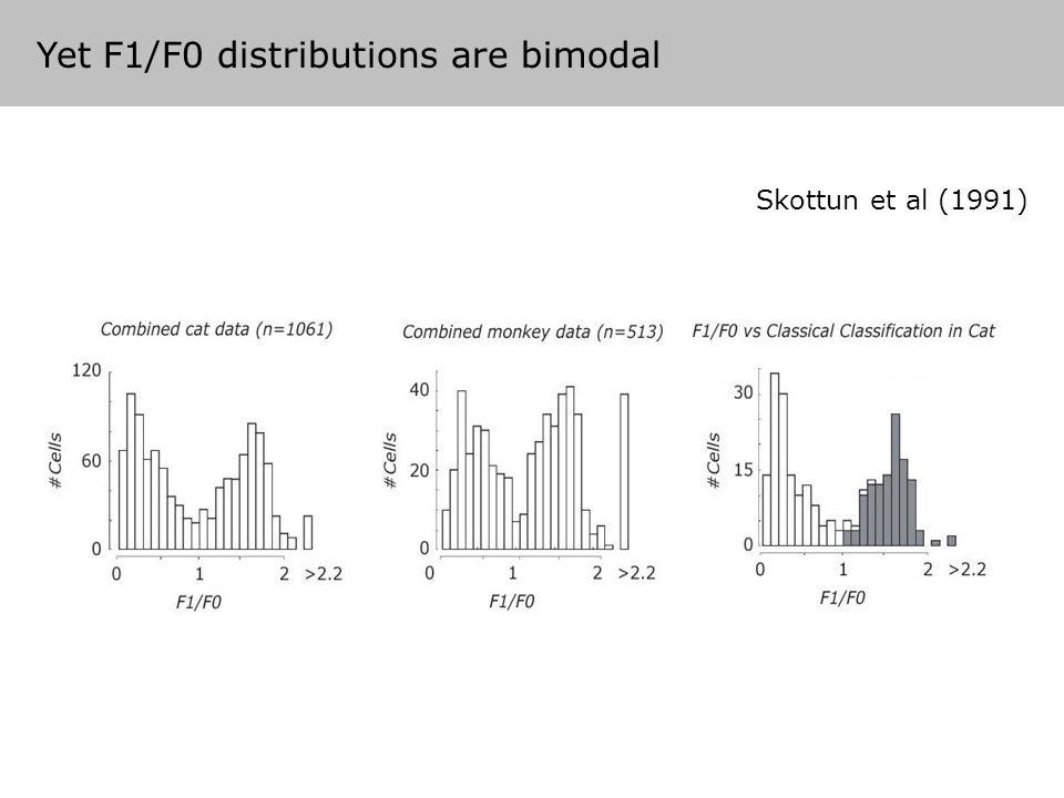 Skottun et al (1991) Yet F1/F0 distributions are bimodal