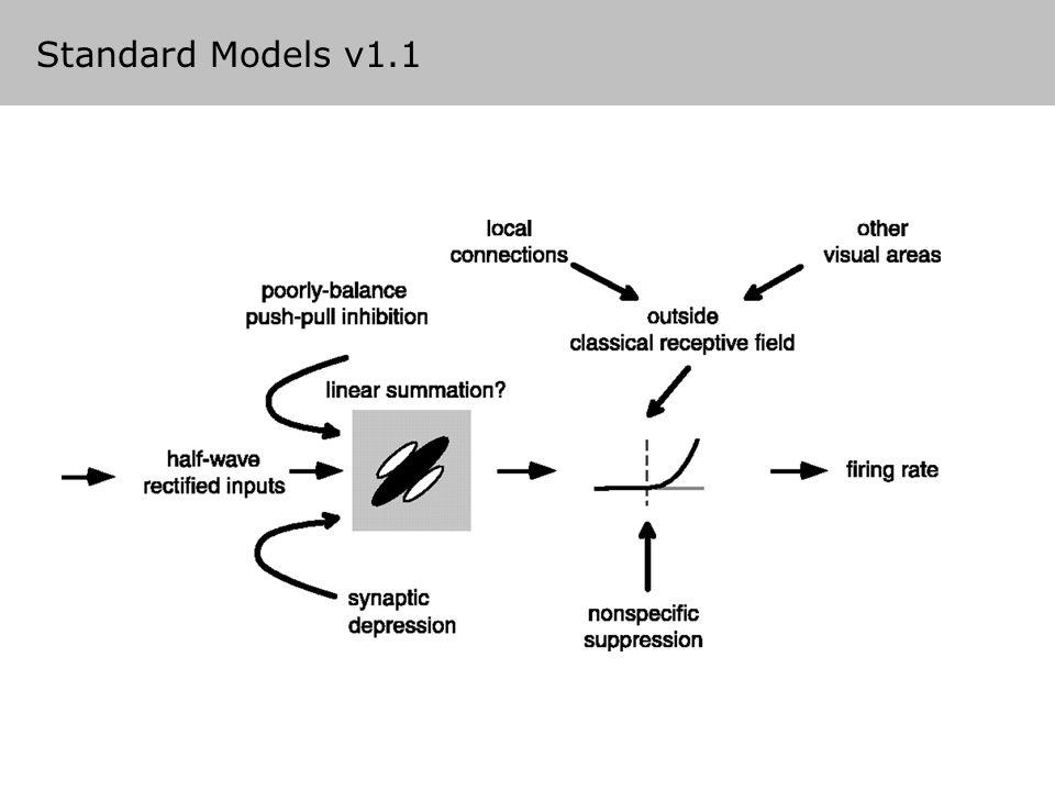 Standard Models v1.1