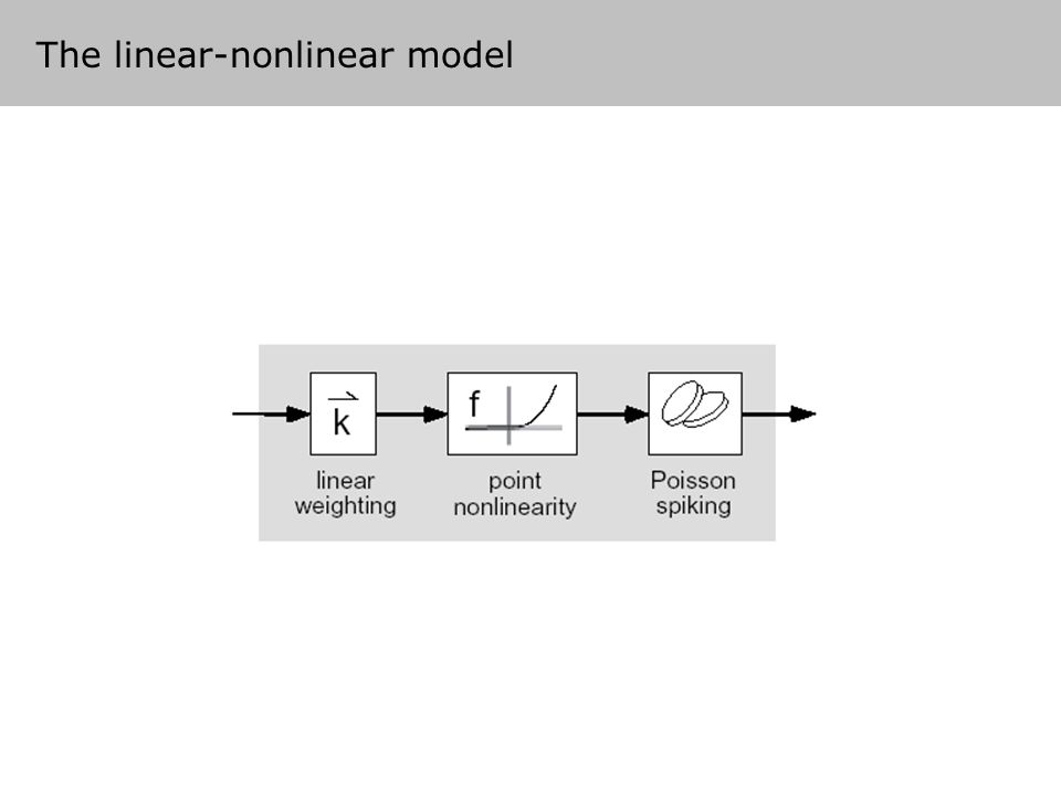 The linear-nonlinear model