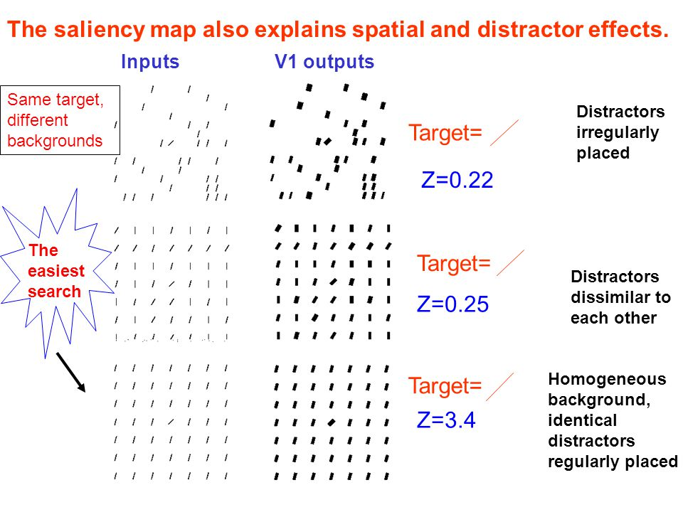 The V1 saliency map also explains: Visual search asymmetry: e.g., searching for longer line among shorter ones is easier than the reverse, searching for circle with a gap among closed circles easier than reverse, etc.