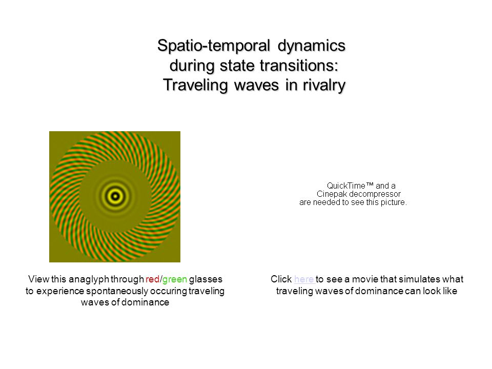 Spatio-temporal dynamics during state transitions: Traveling waves in rivalry View this anaglyph through red/green glasses to experience spontaneously occuring traveling waves of dominance Click here to see a movie that simulates what traveling waves of dominance can look likehere