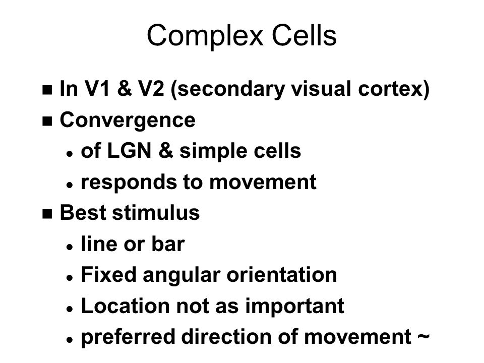 Complex Cells n In V1 & V2 (secondary visual cortex) n Convergence l of LGN & simple cells l responds to movement n Best stimulus l line or bar l Fixed angular orientation l Location not as important l preferred direction of movement ~