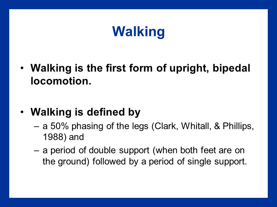 Early Walking Independent steps are taken.Feet are flat, spread wide apart, with out- toeing.