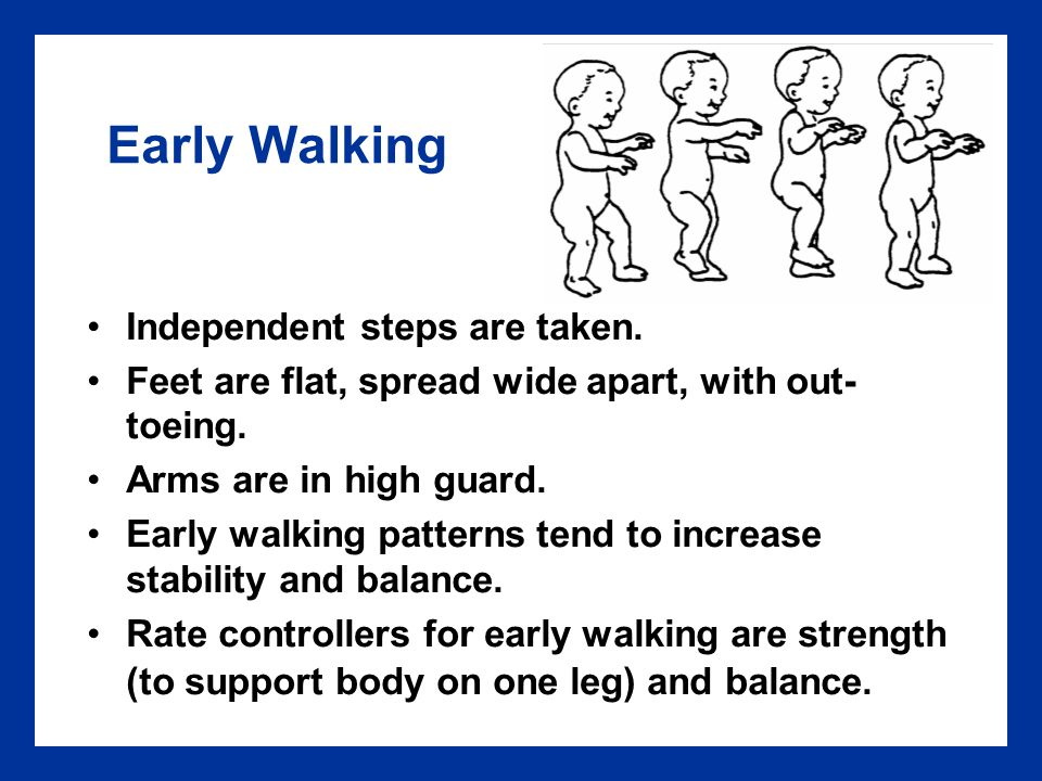 Proficient Walking Trade stability for mobility Stride length increases.