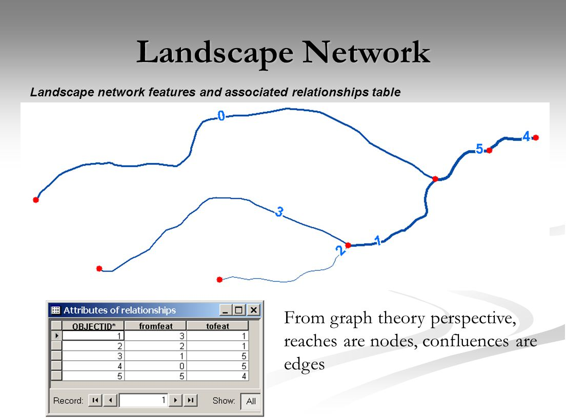 Landscape Network Landscape network features and associated relationships table From graph theory perspective, reaches are nodes, confluences are edge