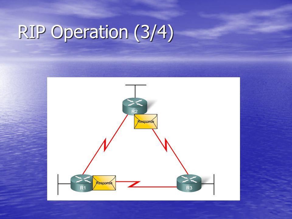 Basic RIP Configuration : Specifying Networks (2/2)
