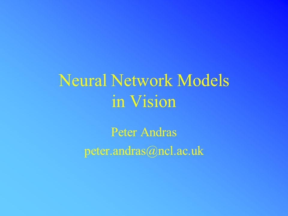 Neural Network Models Visual object detection Object Features: colour; texture; edge distribution; contrast distribution; etc.