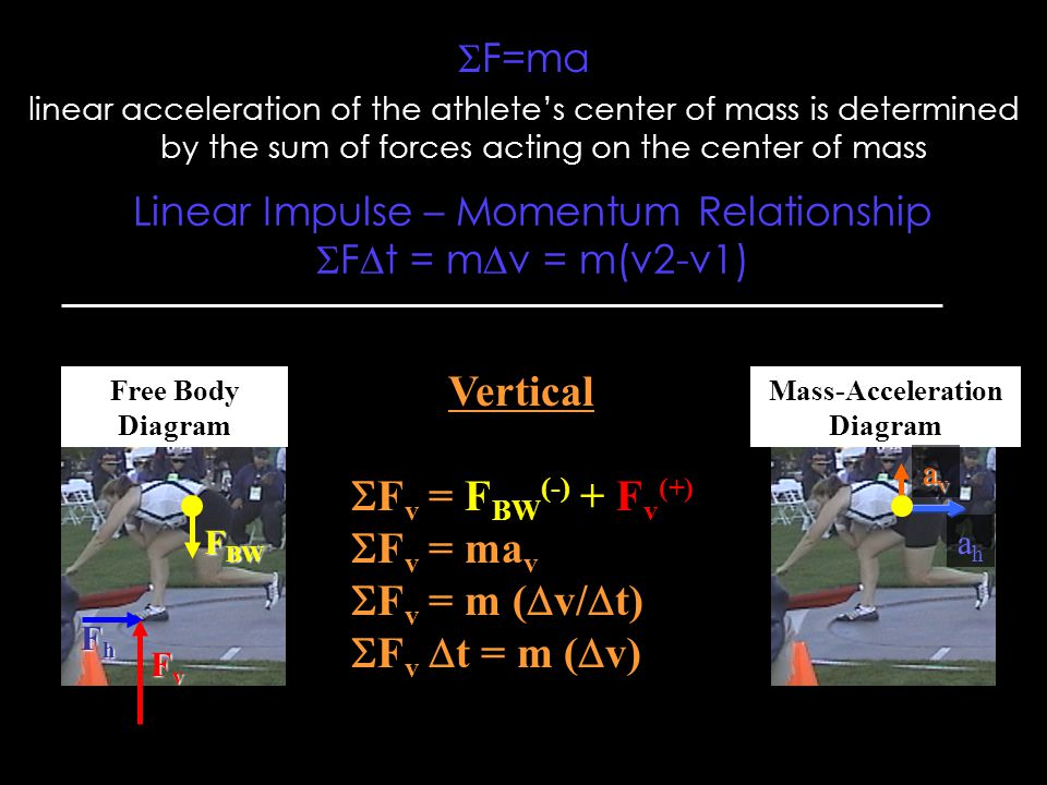  F=ma linear acceleration of the athlete's center of mass is determined by the sum of forces acting on the center of mass Free Body Diagram Mass-Acceleration Diagram FvFvFvFv FhFhFhFh F BW Vertical  F v = F BW (-) + F v (+)  F v = ma v  F v = m (  v/  t)  F v  t = m (  v) ahah avavavav Linear Impulse – Momentum Relationship  F  t = m  v = m(v2-v1)
