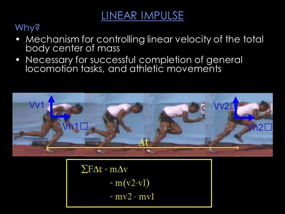 Mechanical objective of the shot put: Vertical Impulse (net positive) Horizontal impulse (net negative - translate backward)