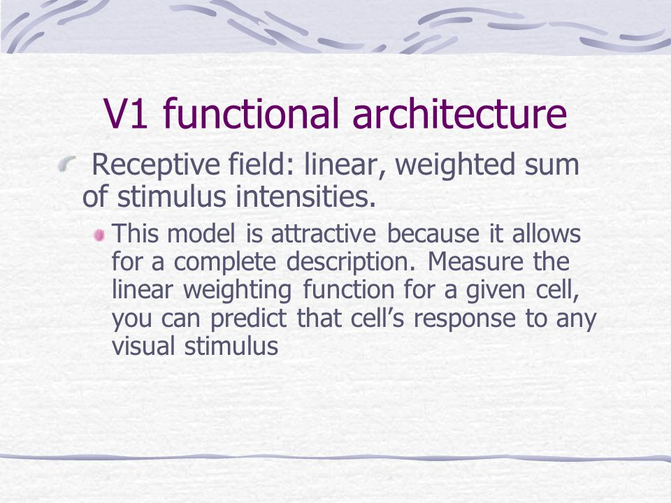V1 functional architecture Receptive field: linear, weighted sum of stimulus intensities.