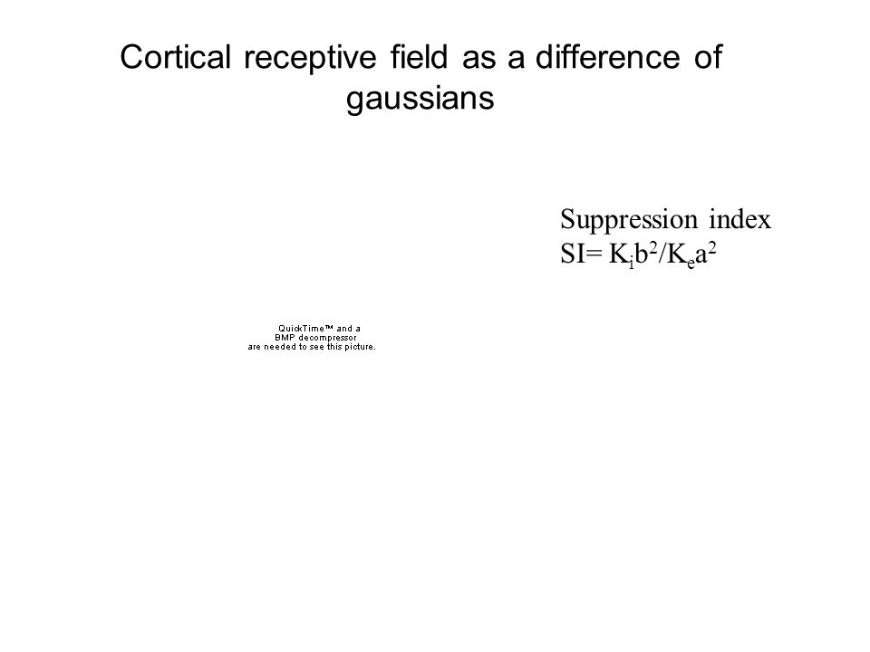 Cortical receptive field as a difference of gaussians Suppression index SI= K i b 2 /K e a 2