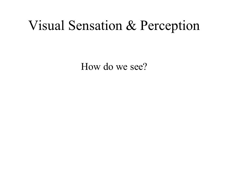 Visual Sensation & Perception How do we see