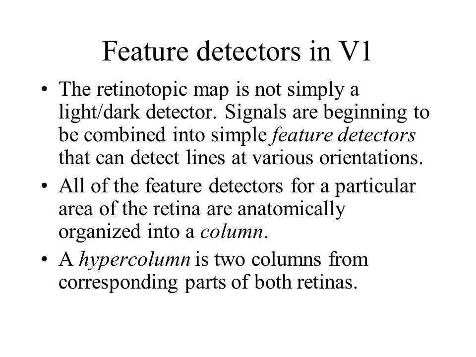 Feature detectors in V1 The retinotopic map is not simply a light/dark detector.