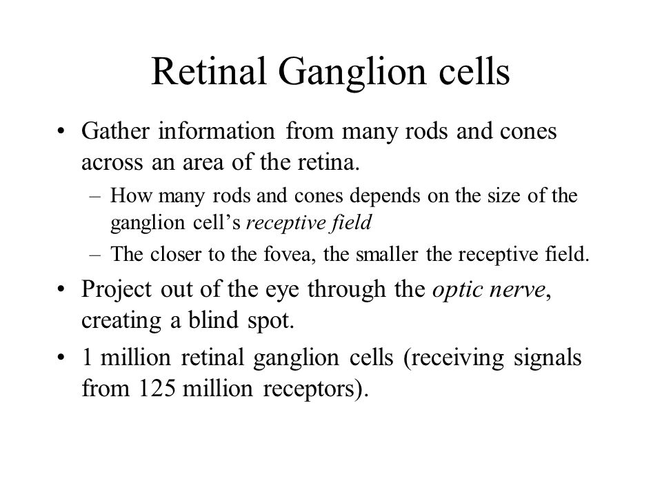 Retinal Ganglion cells Gather information from many rods and cones across an area of the retina.
