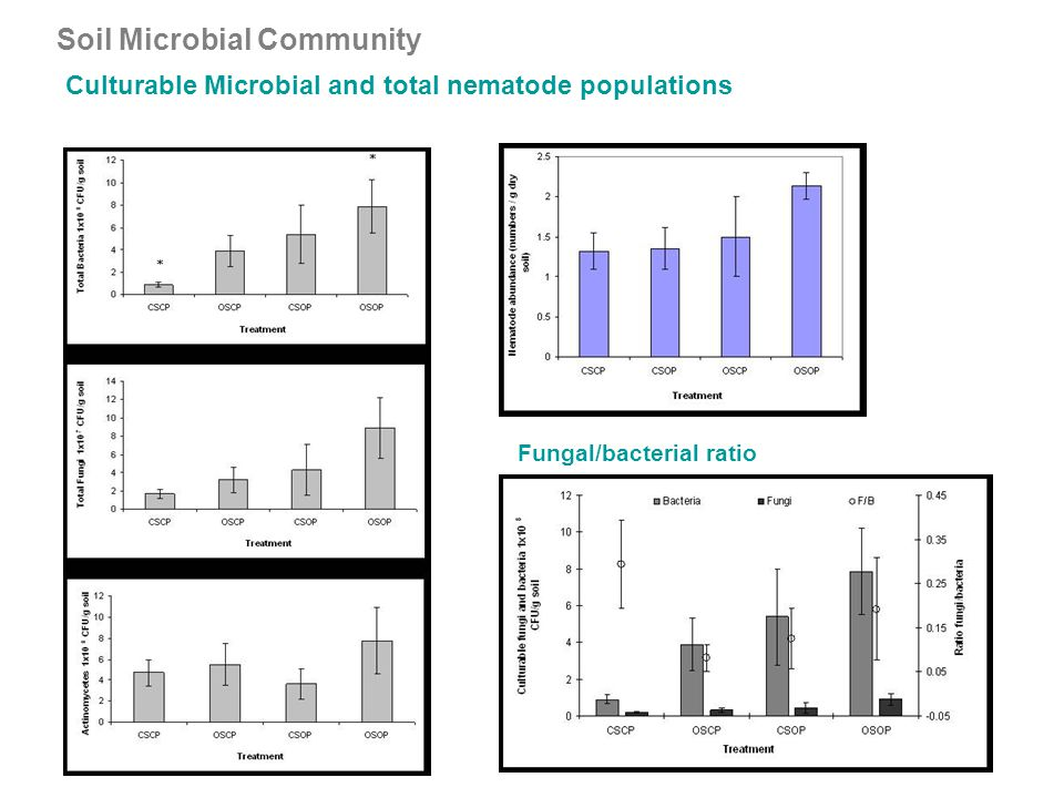 Soil Microbial Community Culturable Microbial and total nematode populations Fungal/bacterial ratio