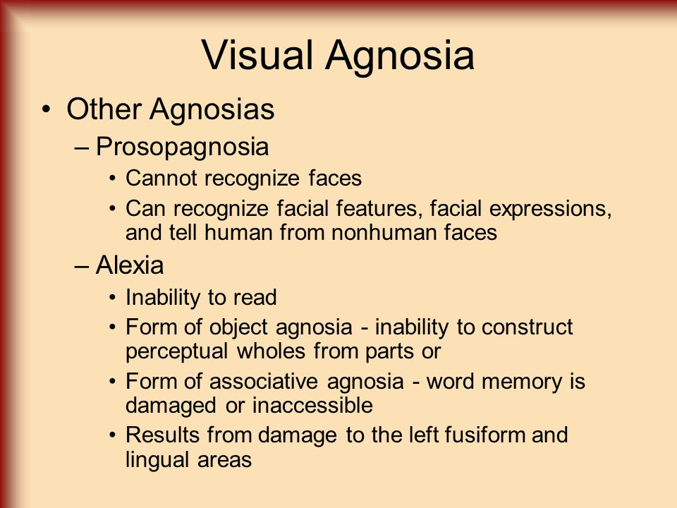 Visual Agnosia Other Agnosias –Prosopagnosia Cannot recognize faces Can recognize facial features, facial expressions, and tell human from nonhuman fa