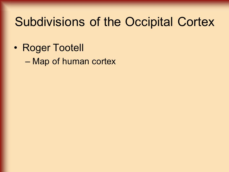 Subdivisions of the Occipital Cortex Roger Tootell –Map of human cortex