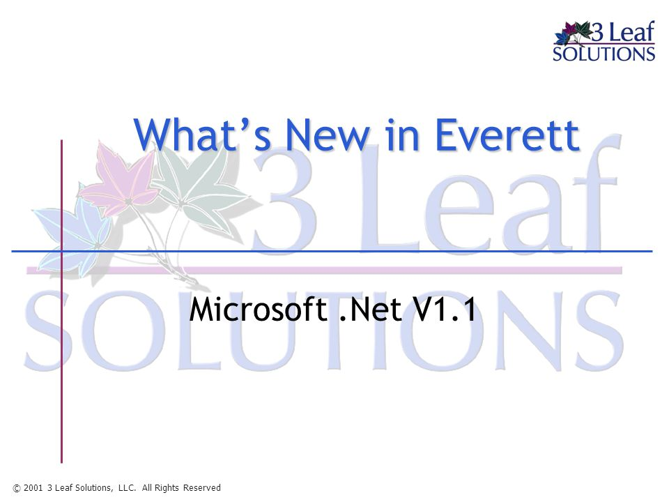 © 2001 3 Leaf Solutions, LLC. All Rights Reserved What's New in Everett Microsoft.Net V1.1