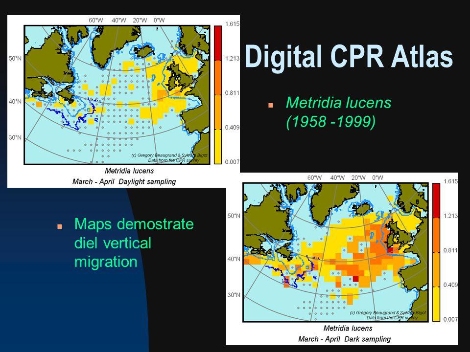 Digital CPR Atlas n Metridia lucens (1958 -1999) n Maps demostrate diel vertical migration