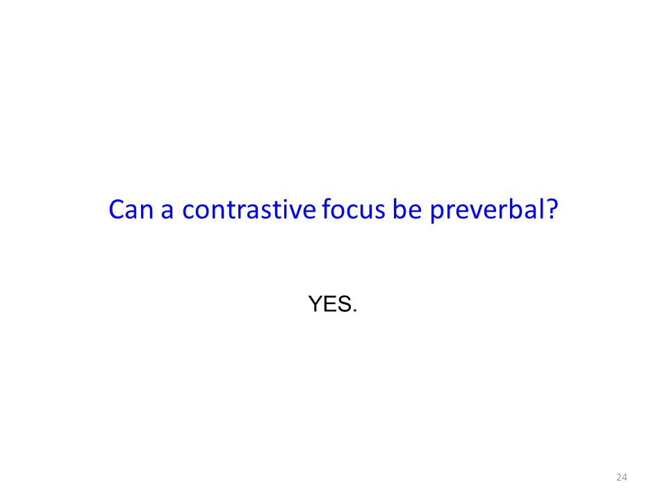 Can a contrastive focus be preverbal 24 YES.